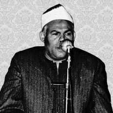 محمد عبد الحليم